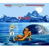 Fight for Vengeance - Mega Drive / Genesis  (PRE-ORDER)